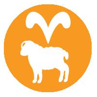 logo valdecy carneiro