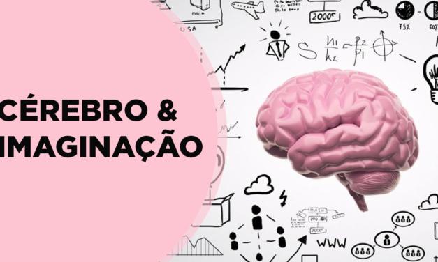 Cérebro e Imaginação