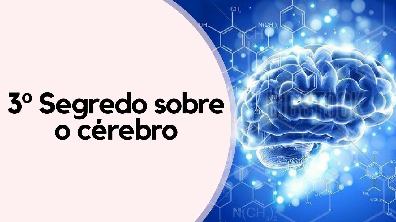 O Terceiro segredo sobre o Cérebro